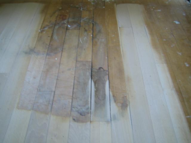 Houten vloer parketvloer met waterschade mooievloeren